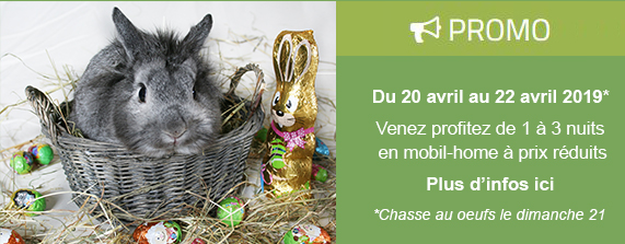 Promo chasse aux oeufs